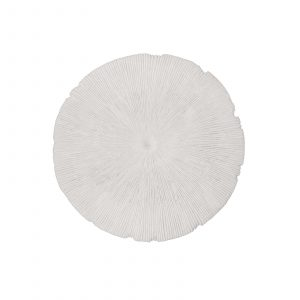 Sand Dollar Wall Decor Small